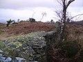 Dry Stone Wall, Rusland Heights - geograph.org.uk - 314420.jpg