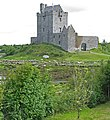 Dunguaire Castle viewed from rising ground - geograph.org.uk - 955187.jpg