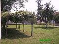 Dvorište u selu Crvena Jabuka - panoramio.jpg