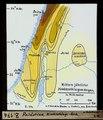 ETH-BIB-Palästina, Niederschlags-Karte-Dia 247-Z-00174.tif