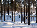 EU-EE-Tallinn-Pirita-Kloostrimetsa 013.JPG