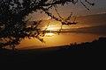 Eastern Serengeti 2012 05 31 3003 (7522611576).jpg