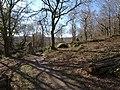 Edge of Lustleigh Cleave - geograph.org.uk - 1763262.jpg