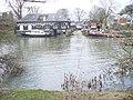 Eel Pie Island - geograph.org.uk - 1177269.jpg