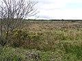 Eggybane Hill - geograph.org.uk - 407626.jpg