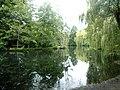 Eimsbütteler Park Am Weiher Bäume (6).jpg