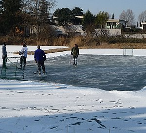 Pond hockey - Image: Eishockey auf dem Backsteinweiher panoramio