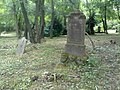 Elhagyott temető - Abandoned Cemetery - panoramio (1).jpg