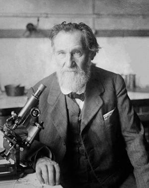 Élie Metchnikoff - Metchnikoff, c.1910–1915.