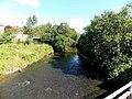 Ely River, Brynsadler - geograph.org.uk - 4023240.jpg