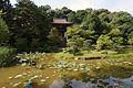 Enjoji Nara01s4592.jpg