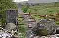 Entrance gate - geograph.org.uk - 443537.jpg