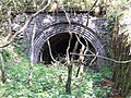 Entrance to Trubshaw's Tunnel - geograph.org.uk - 416088.jpg