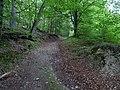 Erkensruhr valley to Gierberg 07.jpg