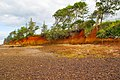 Erosion of Red Cliffs of Scarborough-2 (8975637022).jpg