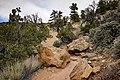 Escalante Petrified Forest State Park 03.jpg