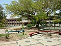 Escola Normal Antonino Freire B.jpg