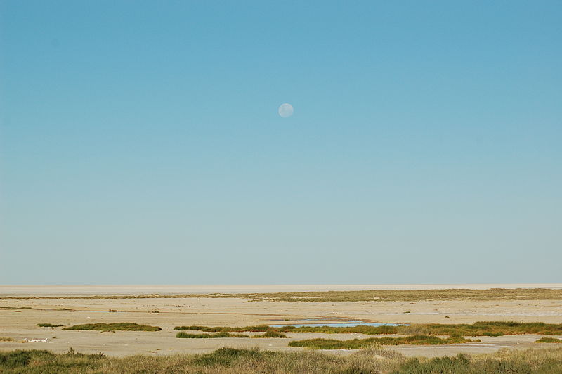 File:Etosha National Park, Namibia (3015762977).jpg