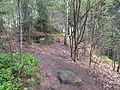 Felsenpfad Kirkel IMG 0601.JPG
