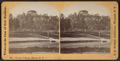 Female College, Elmira, N.Y, by Walker, L. E., 1826-1916.png