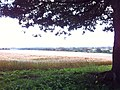 Field - panoramio (36).jpg