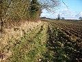 Field edge path - geograph.org.uk - 1630381.jpg