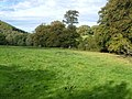Field near Burley Wood - geograph.org.uk - 249554.jpg