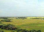 Field of Hay (16198592500).jpg