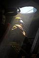 Firefighter Onboard Royal Navy Warship MOD 45157521.jpg