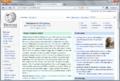 Firefox 4.0 Screenshot.png