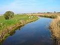 Five Waterings Sewer - geograph.org.uk - 394345.jpg