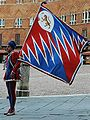 Flag bearer Pantera Campo.jpg