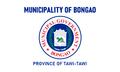 Flag of Bongao, Tawi-Tawi.png