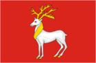 Flag of Rostov.png