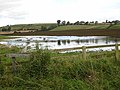Flood near Ryal - geograph.org.uk - 960175.jpg