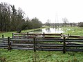 Flooded pasture in Trowse - geograph.org.uk - 1670626.jpg