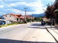 Florina (1).png