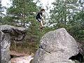 Fontainebleau saut.JPG