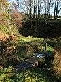 Footbridge and pool - geograph.org.uk - 1588020.jpg