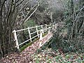 Footbridge over Row Brook - geograph.org.uk - 627419.jpg