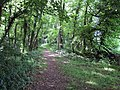 Footpath, Battlescombe - geograph.org.uk - 192363.jpg