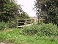 Footpath and bridge - geograph.org.uk - 1031417.jpg