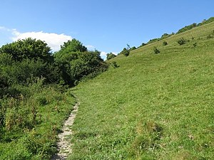Black Hill Down - Footpath at foot of Black Hill