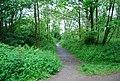 Footpath off Walls Drive - geograph.org.uk - 1335571.jpg