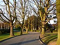 Footpath through Shrewsbury School grounds - geograph.org.uk - 1470032.jpg