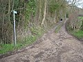 Footpath to Howler's Heath - geograph.org.uk - 302292.jpg