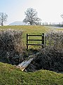 Footpath to the River Wye - geograph.org.uk - 693785.jpg