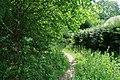 Forêt domaniale de Bois-d'Arcy 7.jpg