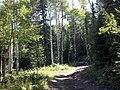 Fort Collins-Loveland, CO, CO, USA - panoramio (2).jpg