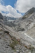 Fox Glacier in Westland National Park 03.jpg
